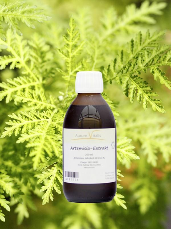 Artemisia-Extrakt 250ml